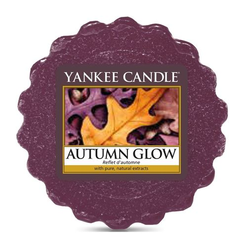 "Yankee Candle ""Autumn Glow"" Wax Melts 1556222E"